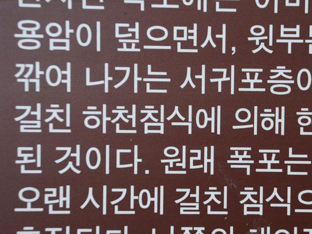 Какой язык в Южной Кореи
